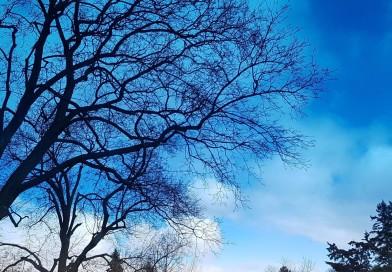 نقاشی طبیعت -آسمان  تورنتو – مانت پلزنت –   ،Toronto Beautiful Sky